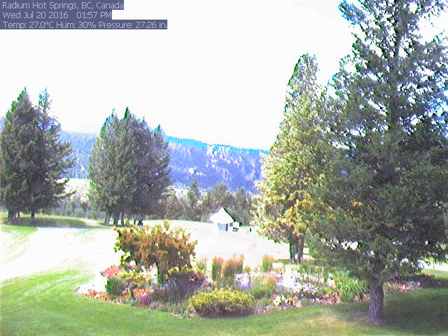 Springs Webcam
